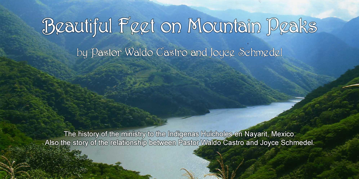 homepage-nayarit-mountains-book-link
